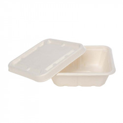 Ecoware-750ml box with lid...